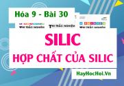 Tính chất hóa học của Silic (Si), Silic dioxit (SiO2) và công nghiệp Silicat - Hóa 9 bài 30